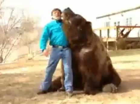 Urso pardo vs Urso polar - Página 2 889