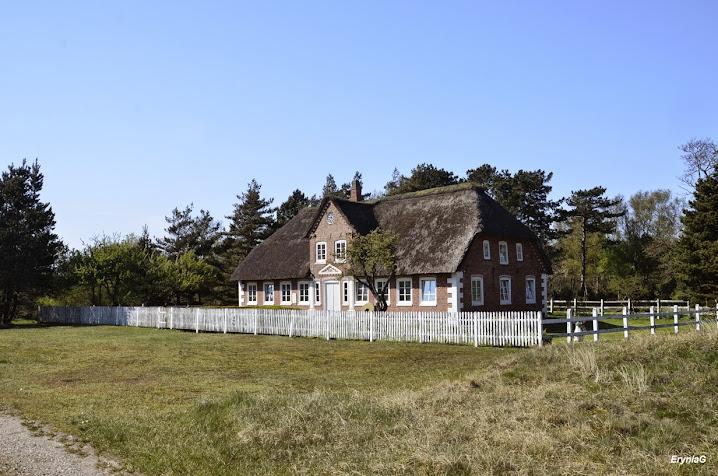 patrz: Rømø iRibe