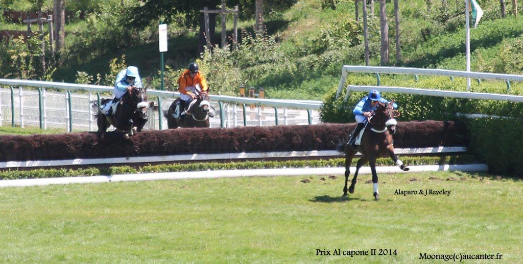 Photos Auteuil le 21-06-2014 IMG_2034