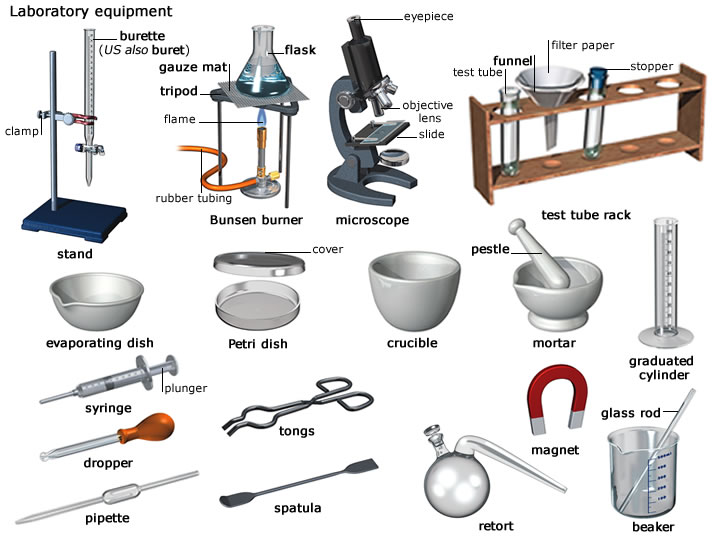 Science Lab Equipment Definitions on health grade 5 english worksheets