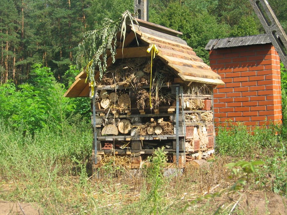 domek dla owadów, Carska Droga, Podlasie