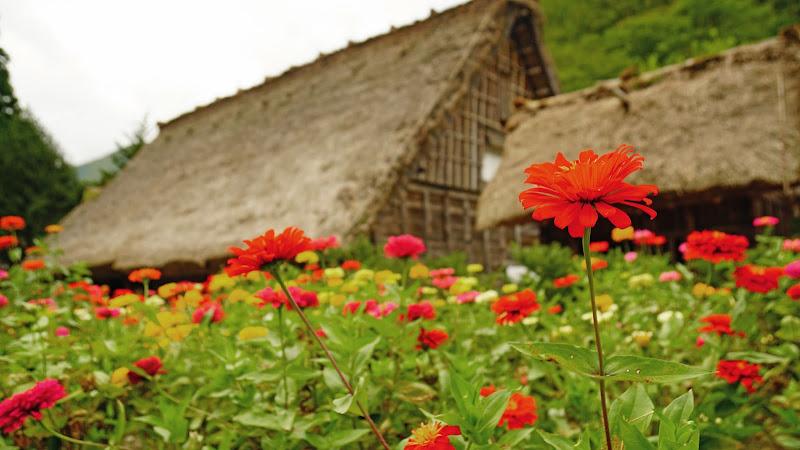 白川郷 民家園 写真7
