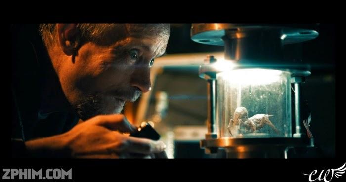 Ảnh trong phim Quái Vật Biển - Bugs 3D 4
