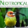 Neotropical Birding Tours