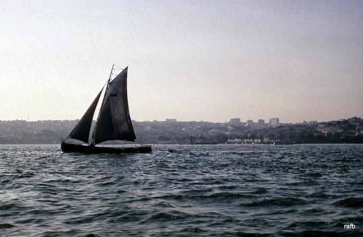 1875-00310010.JPG