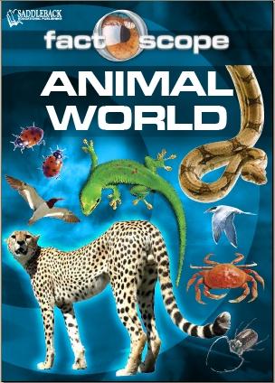 A Year in the World of Dinosaurs by Elizabeth Havercroft PDF eBook