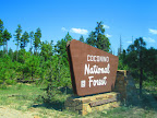 Paseo del Lobo enters the Coconino National Forest on Section 25 (Photo by J. Davis)