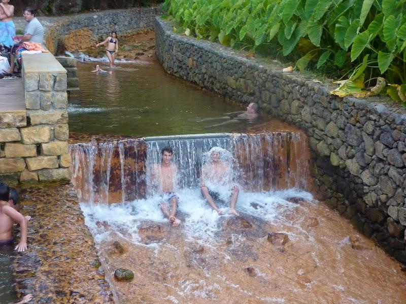 Açores- Natureza viva P1000372