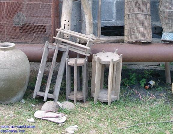 ไม้พยุง ต้นพยุง  Siamese Rosewood
