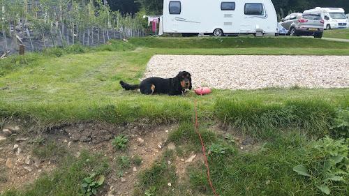 Camping  at Wood Farm Caravan Park