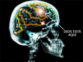 religion en el cerebro