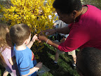 Teacher and child closely examine a flower.