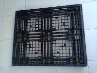 Pallet tại Cà Mau, Lạng Sơn, Lạng Giang