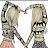 gauri paladugu avatar image