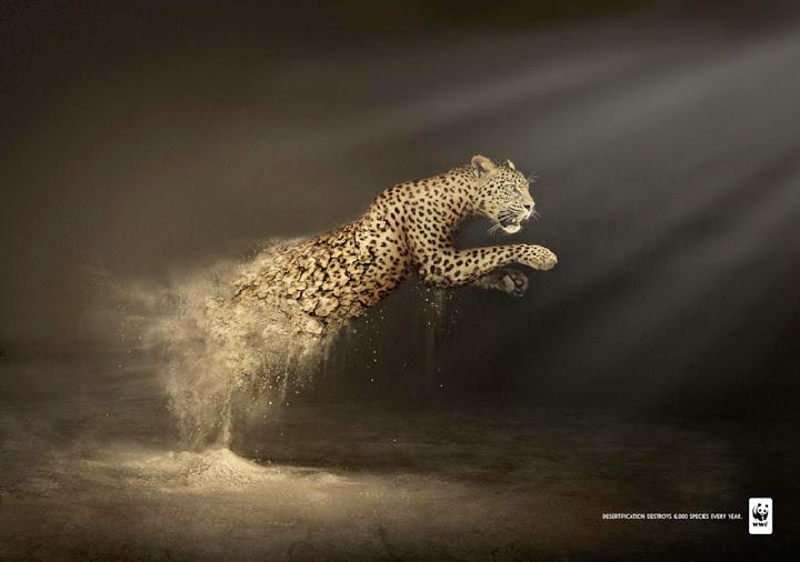 """WWF için Contrapunto BBDO reklam ajansı tarafından hazırlanmış olan bir çalışma. """"Desertification destroys 6.000 species every year"""" """" Çölleşme her yıl 6.000 türü yok ediyor"""""""