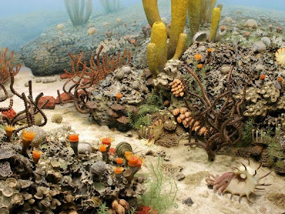 Dasar Laut Permia