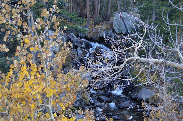 cascade on McGee Creek