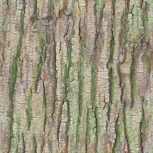 treeBarkTexture