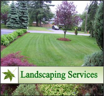 How to choose a landscaping service home improvement for Home and garden services