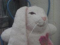 "6"" Cotton Sherpa Bunny"