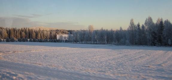 Lapland vanuit de bus