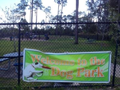 Park, nature, orlando, dog park