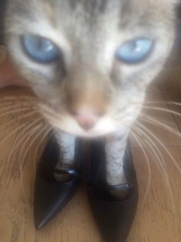 Über unpassende Schuhe