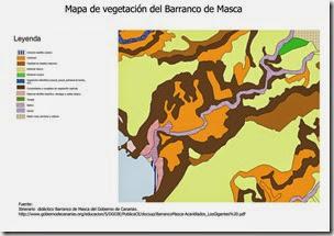 Comunidades vegetales-Barranco de Masca