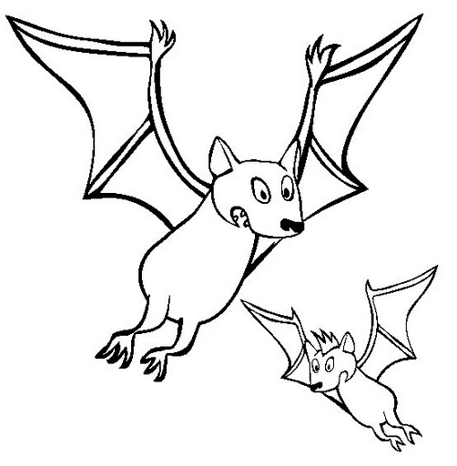 fruit bat coloring pages - photo#13
