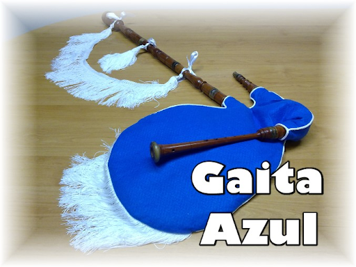 VENDO una GAITA gallega(639) que lleva