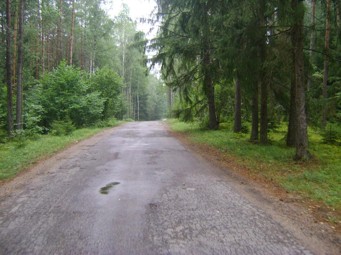 leśna droga, Podlasie