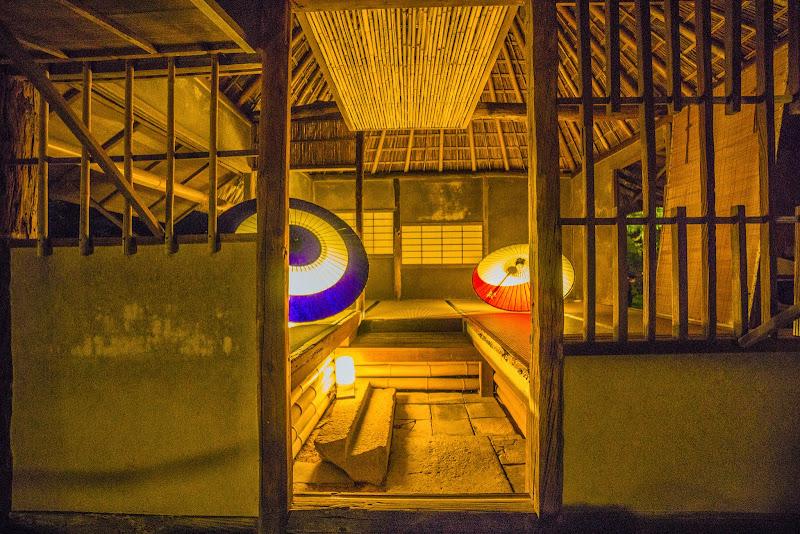 京都 高台寺 紅葉 ライトアップ 写真8
