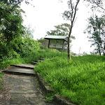 Henry Head Track near Botany Bay National Park (311186)