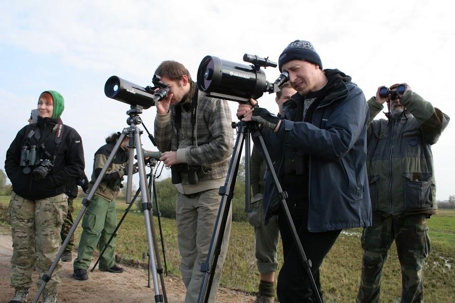 Przyroda teleskop astronomiczny a obserwacja ptaków