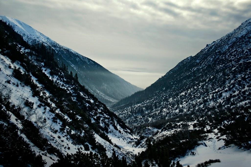 Dolina Kamienista