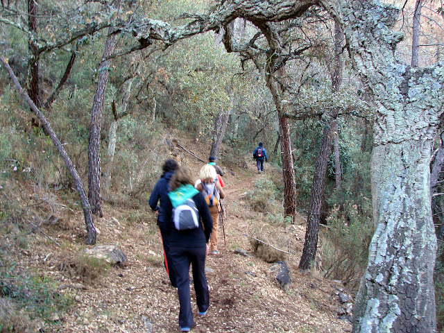 senderismo - Tales - Senda Rodeno - Font Montí - Penya Negra