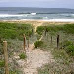 Down to Tallow Beach