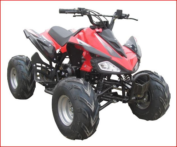 125cc Raptor Feral Avatar Katar Kids Sports Quad Bike