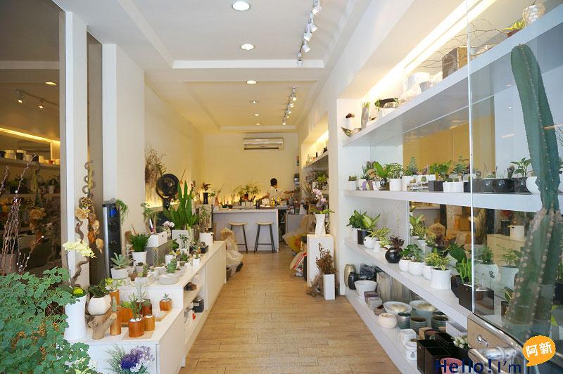 台南盆栽店,日光夏蘭植物工房-8