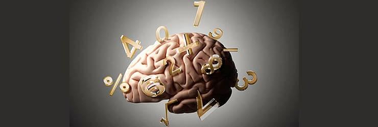 cerebro-numeros.jpg