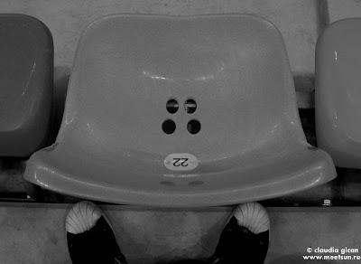 scaunul 22