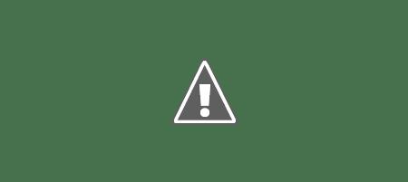 ucraina rusofona 450px Cum va arăta harta Ucrainei, în curând ...
