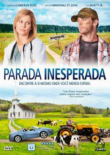 Filme Poster Parada Inesperada DVDRip XviD Dual Audio & RMVB Dublado