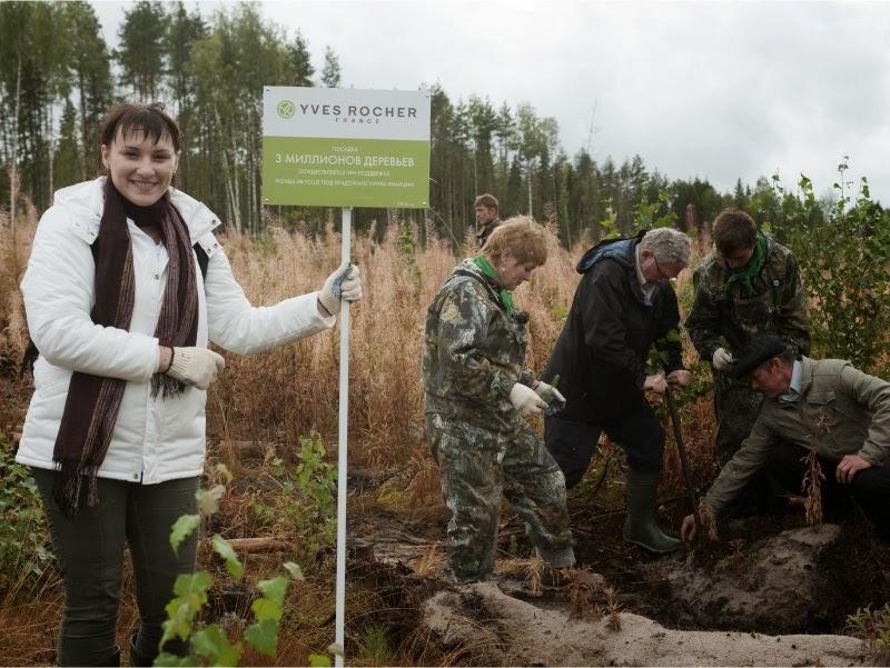 Ив Роше высадка деревьев в России
