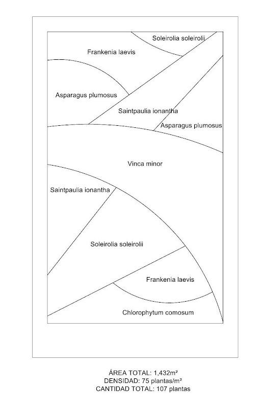 Esquema de plantación de la primera opción jardín vertical interior barcelona listado especies leaf.box