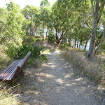 A seat on the path near the lower lookout (402733)