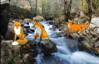 Las zorras a la orilla del rio Meandro fabulas de animales
