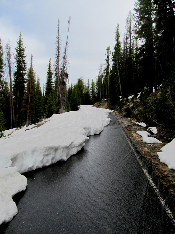 Snowmelt running down the road