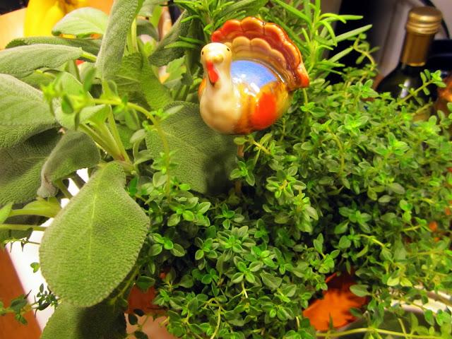 mixed pot of fresh herbs