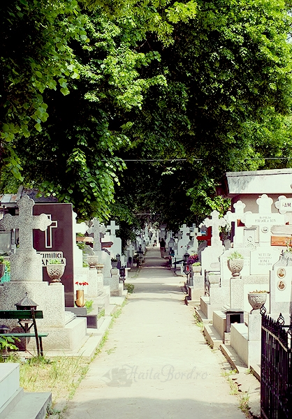 alee cimitir bellu
